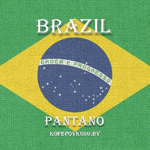 Brazil Pantano Yellow Bourbon (Бразилия Пантано Желтый Бурбон)